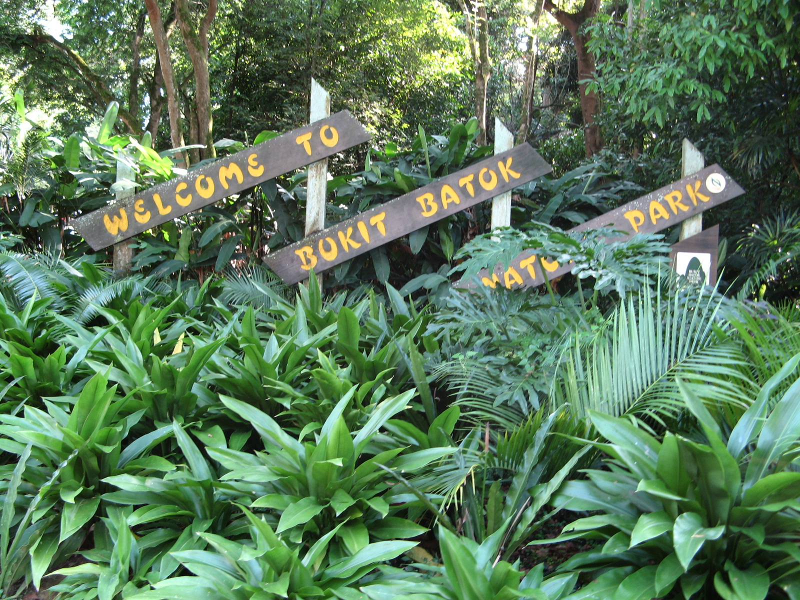bukit batok nature park how to get there