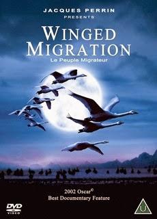 ντοκιμαντέρ για πουλιά