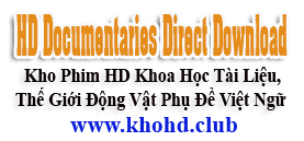 HD Documentaries Direct Download