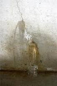 Muskoka Basement Foundation Concrete Crack Repair Muskoka in Muskoka dial 1-800-334-6290