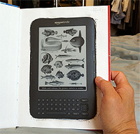 kindle picture book