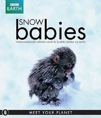 Kar Bebekleri