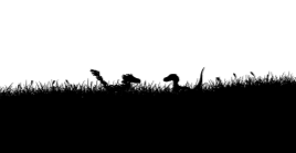 xkcd raptors in the grass