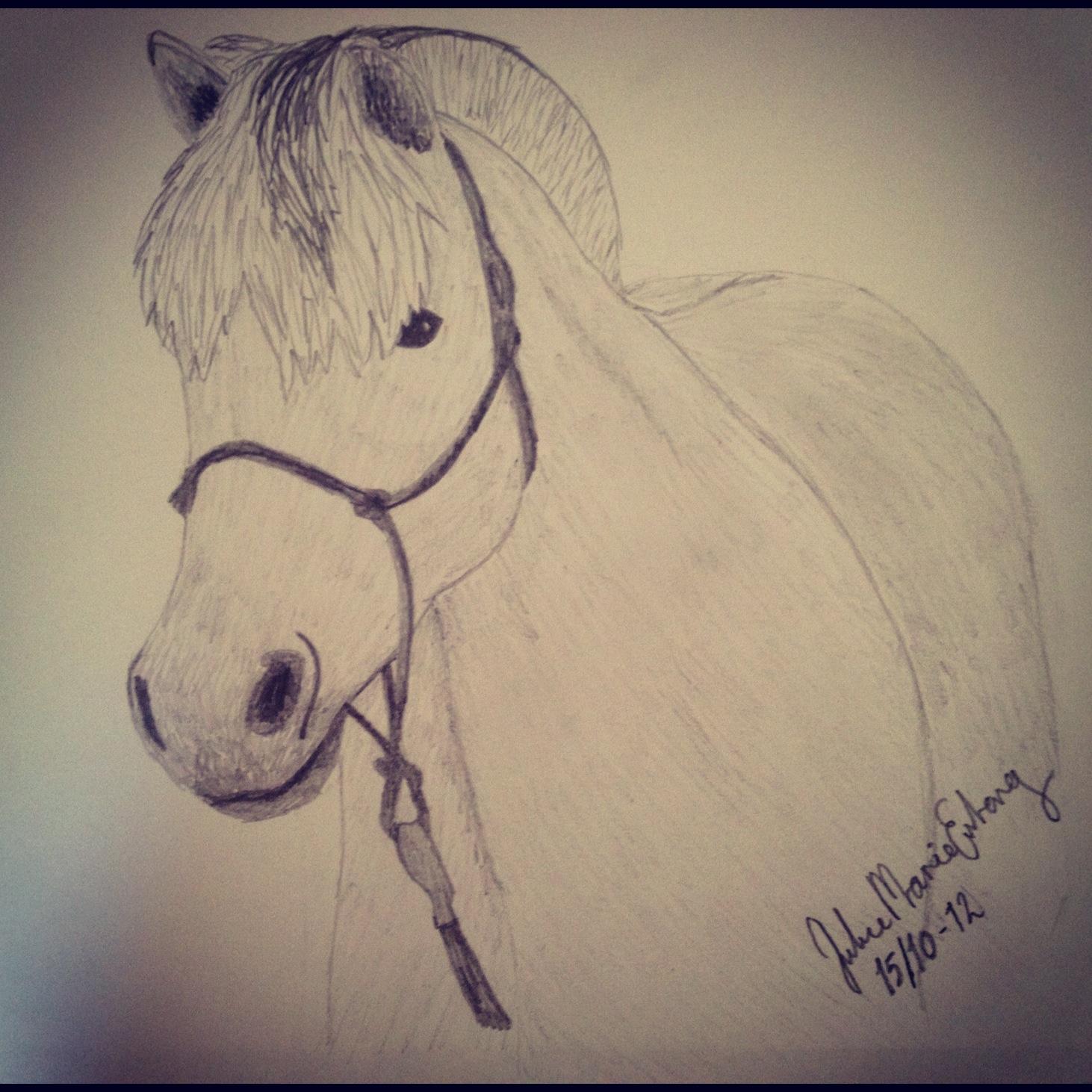 tegninger af heste der stejler