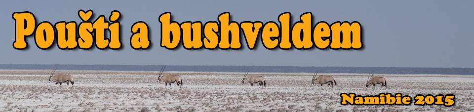 Pouští a bushveldem - Namibie 2015