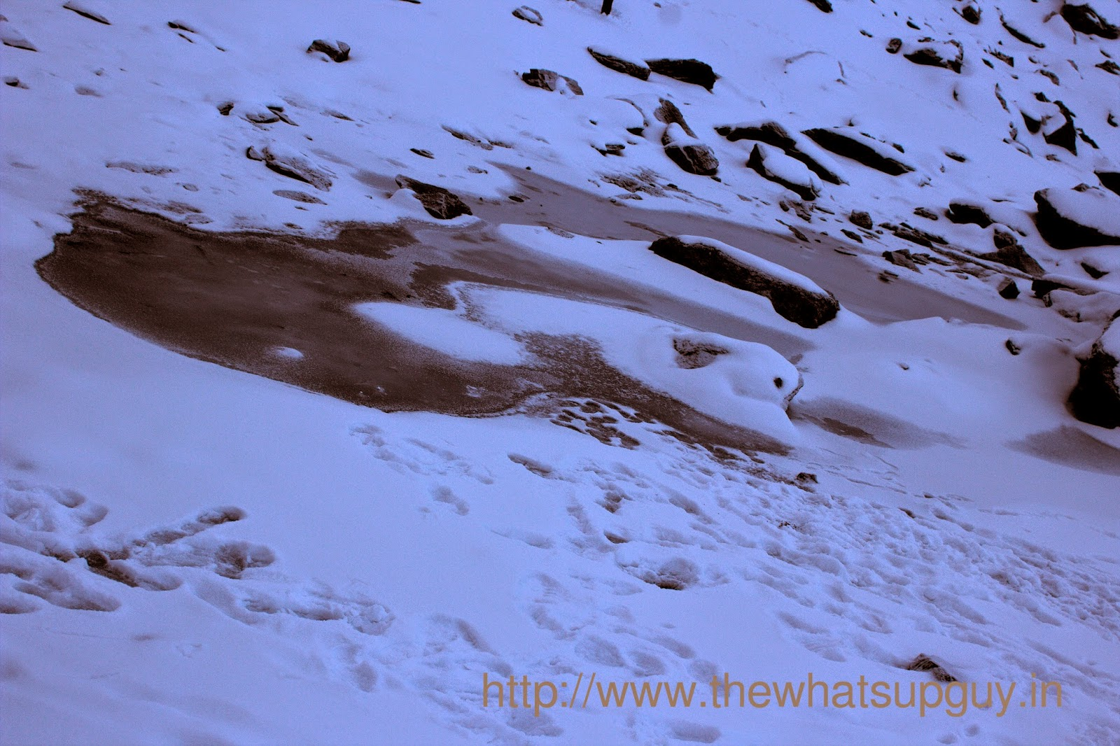 Frozen Lake Roopkund Trek With India Hikes Day 5