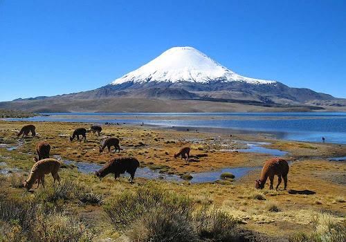 Lago Chungará – Chile