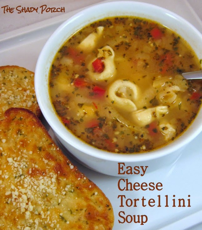 Cheese Tortellini Soup...certainly on the comfort food list!