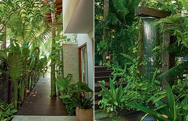 plantas jardins tropicais : plantas jardins tropicais:Blog – FGR Urbanismo: Jardim rico em plantas deixam a casa com uma