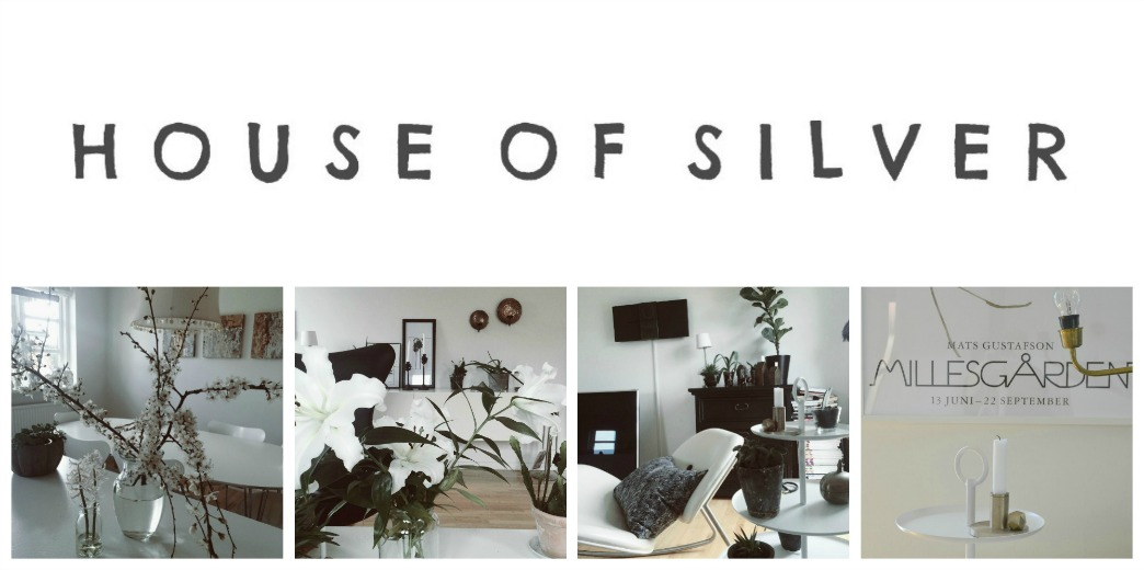 HOUSE OF SILVER