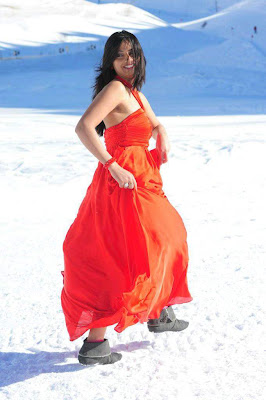 Tollywood Actress Isha Chawla Hot Stills