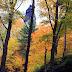 Autumn at Pravčická brána, České Švýcarsko, Hřensko