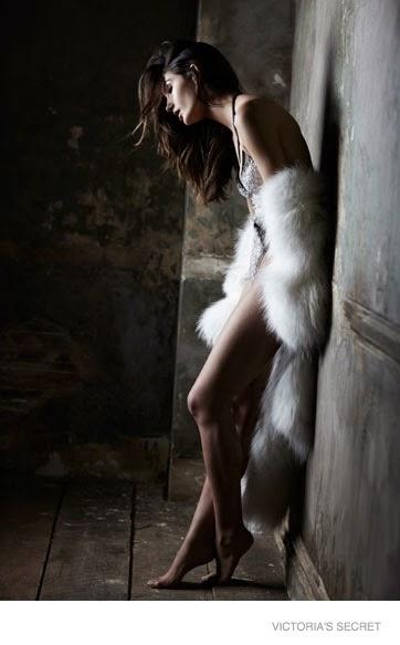 Victoria's Secret 'Fearless' Lingerie Campaign 2014