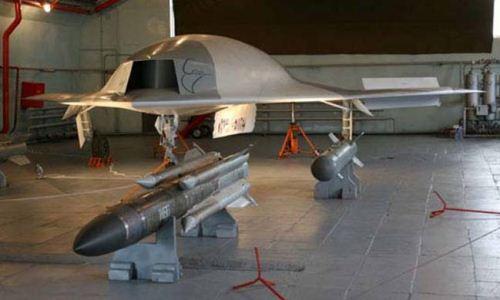 MiG Skat Stingray