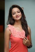 Cute Shanvi Glamorous Photos Gallery-thumbnail-16