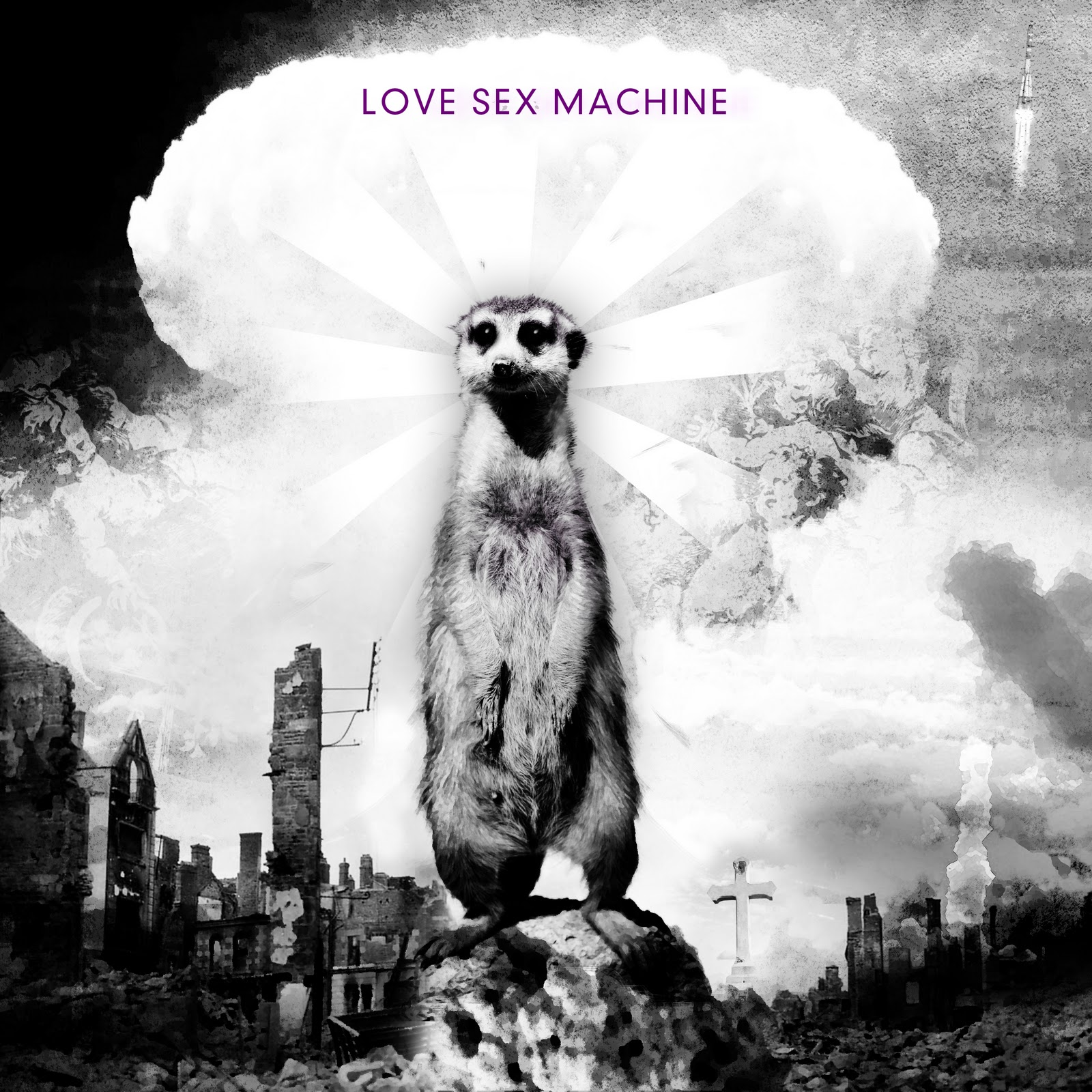 albums Love Sex Machine Love Sex Machine