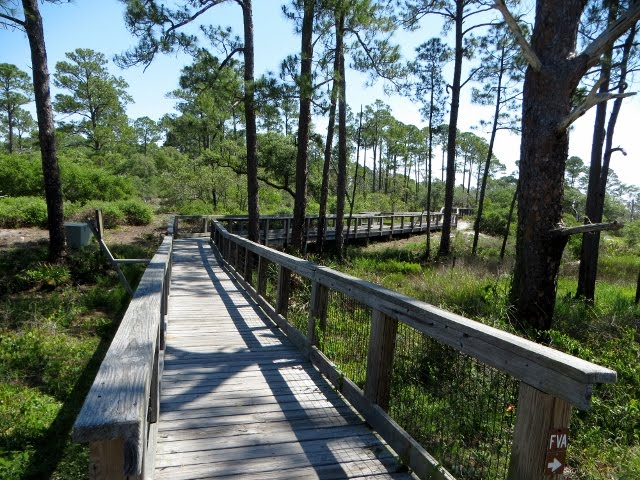 Big Lagoon State Park, West Pensacola, Florida - May 9, 2017
