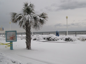 VIRGINIA BEACH from Brenda Foehrkolb