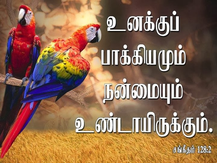 tamil bible pdf free download for mobile