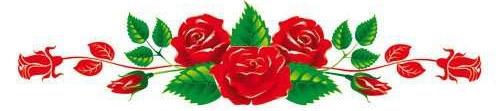 Macfull Blog: Gambar vektor bunga mawar