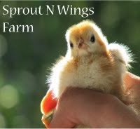 Sprout N' Wings Farm
