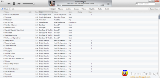 iTunes 11 Songs Tab