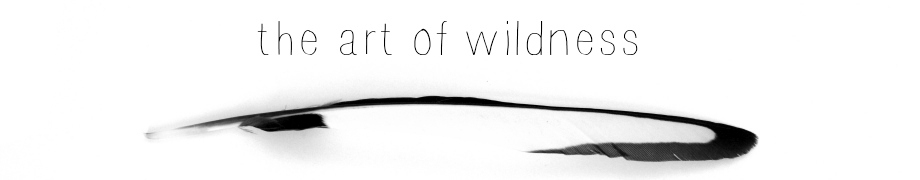 the art of wildness