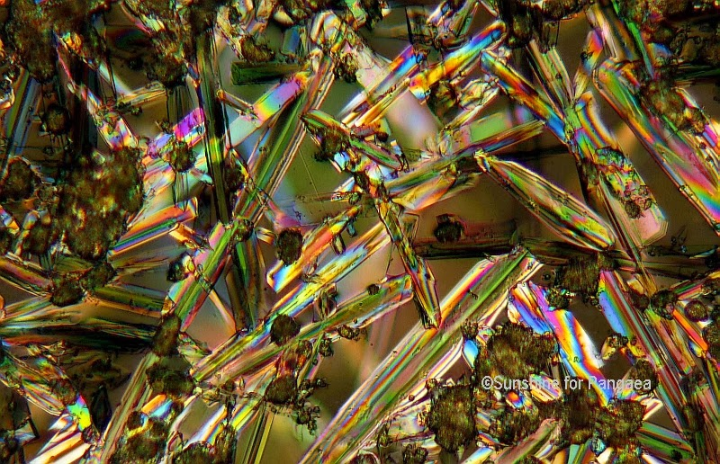 Sodium aluminate under the microscope