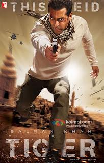Ver Película Ek Tha Tiger Online Gratis (2012)