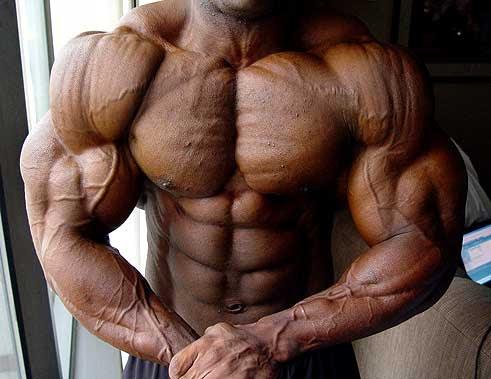 Quemagrasa nutricion y dietas dieta definicion muscular for Dieta definicion