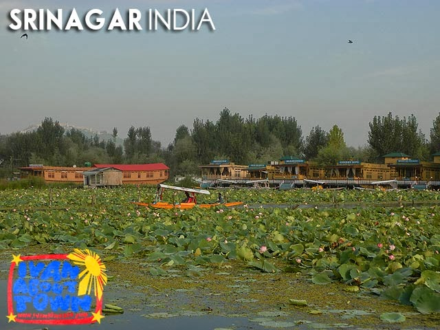 Dal Lake, Srinagar, Kashmir, India