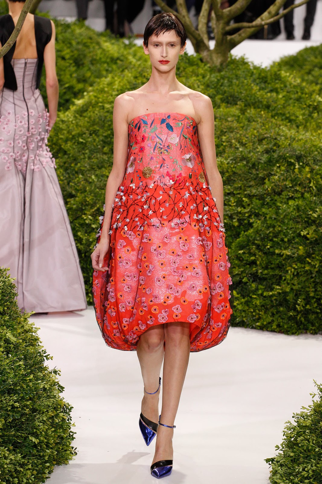 Christian Dior Haute Couture Spring/Summer 2013 (RS)