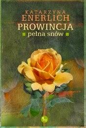 http://lubimyczytac.pl/ksiazka/242671/prowincja-pelna-snow