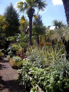 Akamba+Garden+Centre-Exotic+Planting