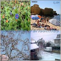 Primavera, Verão, Outono e Inverno. As 4 estações do ano.