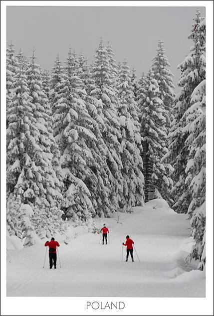 Zimowe Jakuszyce