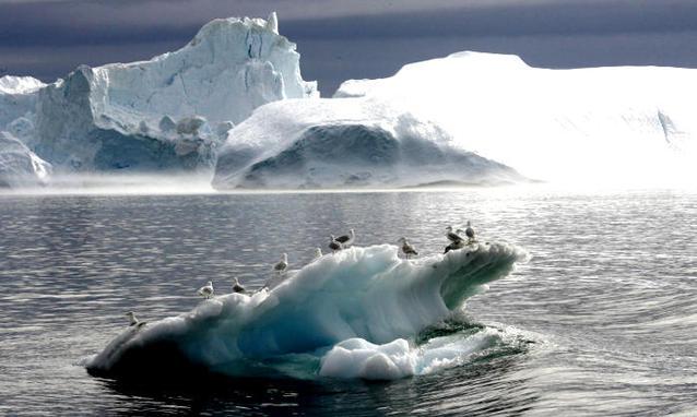 http://silentobserver68.blogspot.com/2012/12/scioglimento-dei-ghiacci-nuova-stima-al.html