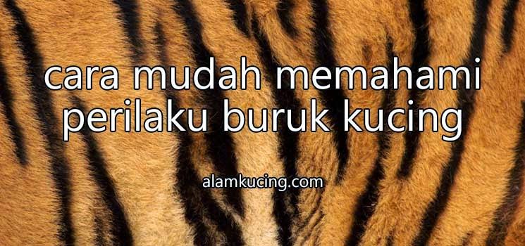 Belang tubuh harimau