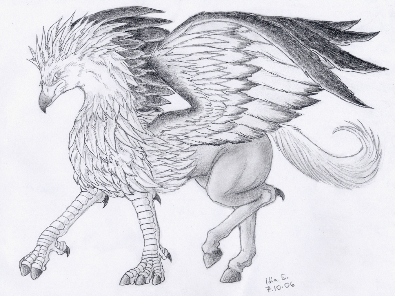 Monstruos mitologicos el grifo y el hipogrifo for Grifo dibujo