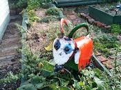 Garden Goat
