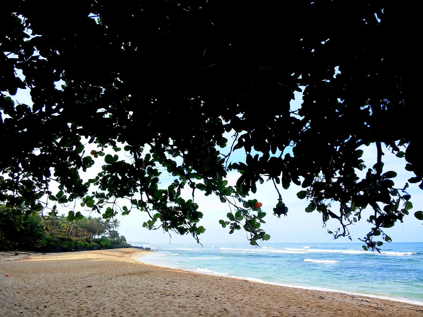 Within the Perfect Camping spot in Patar Beach