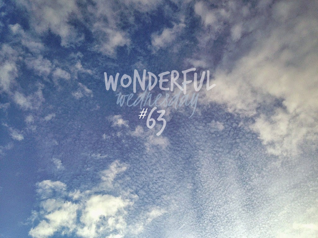 Wonderful Wednesday #63