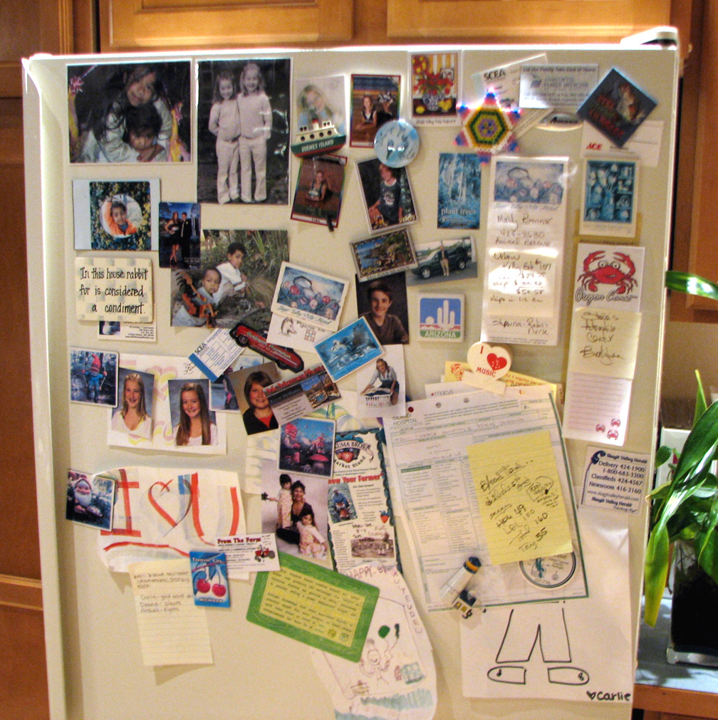 The story\u0027s the same for all of us it starts small. A couple of magnets from places we visited; a couple more tiny reproductions of the winning picture ... & Skagit Leeks: I Feel Bad About My Refrigerator Door