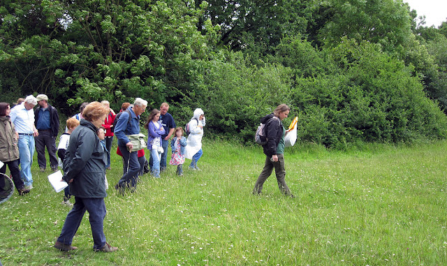 Jenny leading the group into a meadow.  Bumblebee walk in Jubilee Country Park, led by Jenny Price.  19 June 2011.