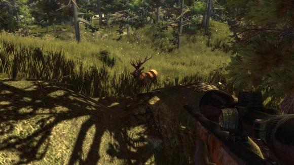 Hunters-Trophy-2-Australia-Game-PC-Review-Screenshot-4