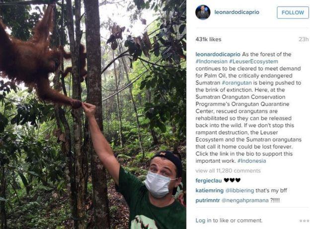Leonardo DiCaprio Instagram
