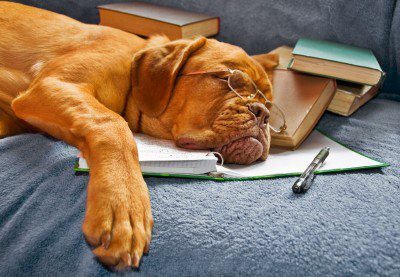 Up All Night, Read All Day..Book Reviews