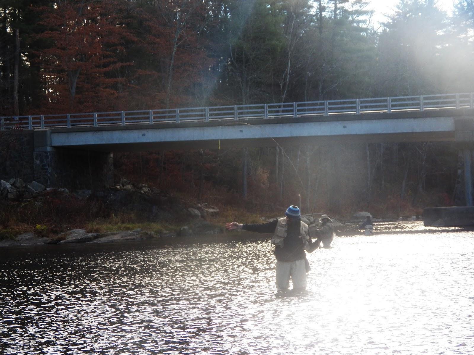 Connecticut fly angler blowing away on the farmington river for Farmington river fishing