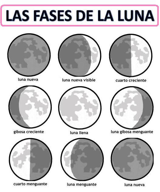 Imprimir las fases de la luna para ni os imagui for Q fase de luna es hoy