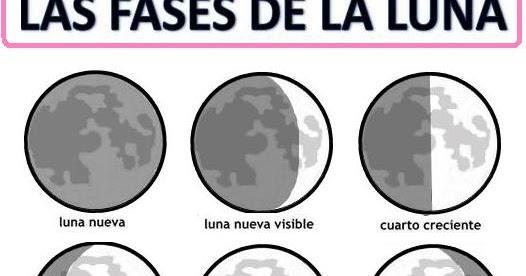 El drag n ruperto fases de la luna for Fases de la luna hoy